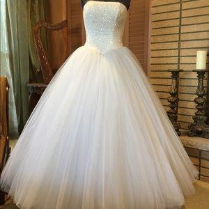 Gorgeous wedding/ball gown